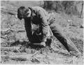 CCC enrollee planting tree - NARA - 195840.tif