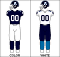 CFL Jersey TOR1991.png
