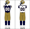 CFL Jersey WPG 1998.png