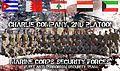 CHARLIE Company 2nd Platoon.jpg