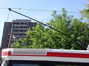 Trolley pole - Trolley pole tipped with a trolley shoe on a Toronto streetcar