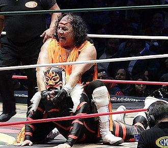Jerry Estrada - Estrada in 2018, applying a hold on El Felino (masked)