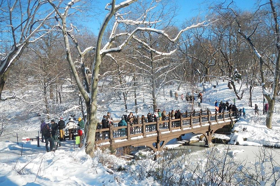 Cabinet Bridge CP snow sun jeh