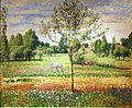 25 / The Meadow with Grey Horse, Eragny
