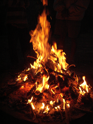 A fire lit using twigs and pine cones.