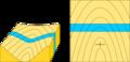 Capa vertical.png