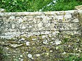 Carving on the parapet of the bridge over the river Windrush - geograph.org.uk - 785723.jpg