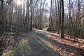 Cascade Springs Nature Preserve, Atlanta, December 2018 3.jpg