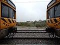 Castelo Branco CP 2243 e CP 2291 (27627838008).jpg