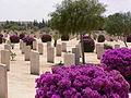 Cemetery at El Alamein - Flickr - heatheronhertravels (2).jpg
