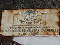 Chã das Caldeiras-Vinho do Fogo (7).jpg