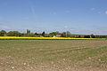 Chailly-en-Bière - Faÿ - 2013-05-04 - IMG 9751.jpg