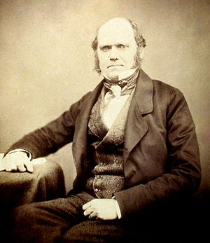 Photograph of Charles Darwin by Maull and Poly...