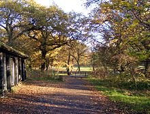 Cherry tree woods finchley.JPG