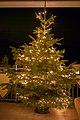 Christmas Tree ( 1030216).jpg