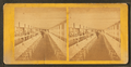 Clam House Dining Room, Rocky Point, R.I, from Robert N. Dennis collection of stereoscopic views 3.png