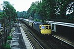 Class 33s on the Southern Region 10.JPG