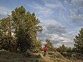 Cline Buttes Bike Trail, 2016.jpg