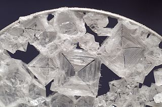 Crystals of sodium chloride.