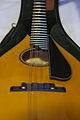 Collings MT2-O mandolin ebony bridge & bound pickguard.jpg