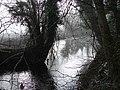 Colwyn Brook - geograph.org.uk - 610699.jpg