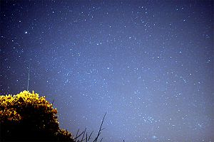 English: Comet 17P/Holmes and Geminid meteor f...