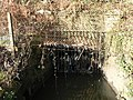 Coy Pond Gardens, stream issues - geograph.org.uk - 658881.jpg