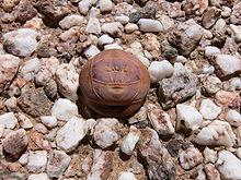 Crassula - Chi Crassula 220px Crassula columnaris P1020356