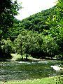 Crni Drim River 78.JPG