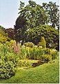 Cruickshank Botanic Garden, Old Aberdeen - geograph.org.uk - 221728.jpg