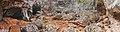Cueva de los Petroglifos1.jpg