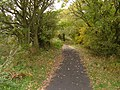 Cycle Trail (Former Scarborough to Whitby Railway) - geograph.org.uk - 1547133.jpg