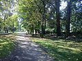 Czeladź-Park..JPG