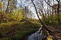 Dülmen, Kirchspiel, Naturschutzgebiet -Franzosenbach- -- 2017 -- 7027.jpg