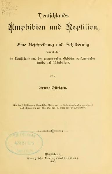 File:Dürigen - Deutschlands Amphibien und Reptilien - 1897.djvu