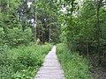Dūkštų sen., Lithuania - panoramio (62).jpg