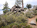DSC02802, South Lake Tahoe, Nevada, USA (5524526238).jpg