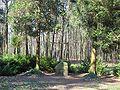 Dauerwaldrevier5 Grabstaette Kalitsch.JPG