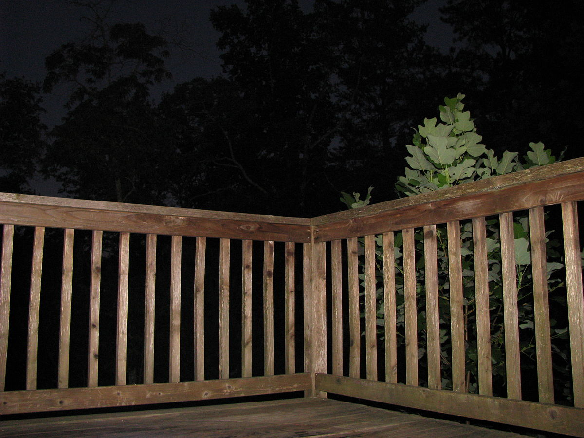 Deck railing wikipedia for What is the best wood for decking