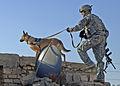 Defense.gov News Photo 071209-N-1132M-062.jpg