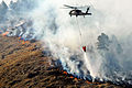 Defense.gov News Photo 120309-A-RN486-004 - A South Dakota Army National Guard UH-60 Black Hawk helicopter drops 600 gallons of water on a fire in Rapid City South Dakota on March 9 2012.jpg