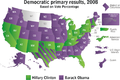 Democratic Primary Results.png