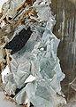 Diaspore-Margarite-rare-09-05d.jpg