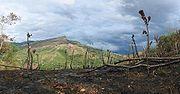 Burned farmland near Santa Fé (Veraguas Province), Panamá.