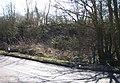Dismantled bridge - geograph.org.uk - 371501.jpg