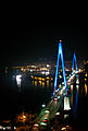 Dolsan Bridge night view.jpg