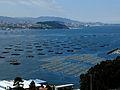 Domaio - Ría de Vigo.jpg