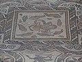 Domus del Mito - Sant'Angelo in Vado 12.jpg