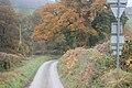 Down Cwm Lane from Level Crossing - geograph.org.uk - 1560192.jpg