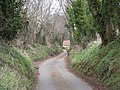 Down the lane to Cound. - geograph.org.uk - 716358.jpg
